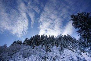 Winterlicher Weitwinkel