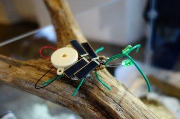 Künstliches Insekt, solarbetrieben