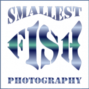 Smallest Fish Photography Logo